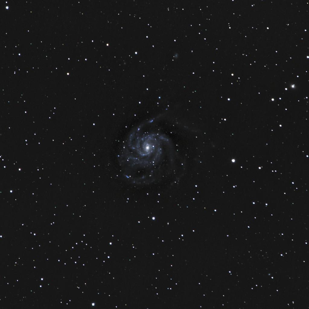 20200518-M101.jpg