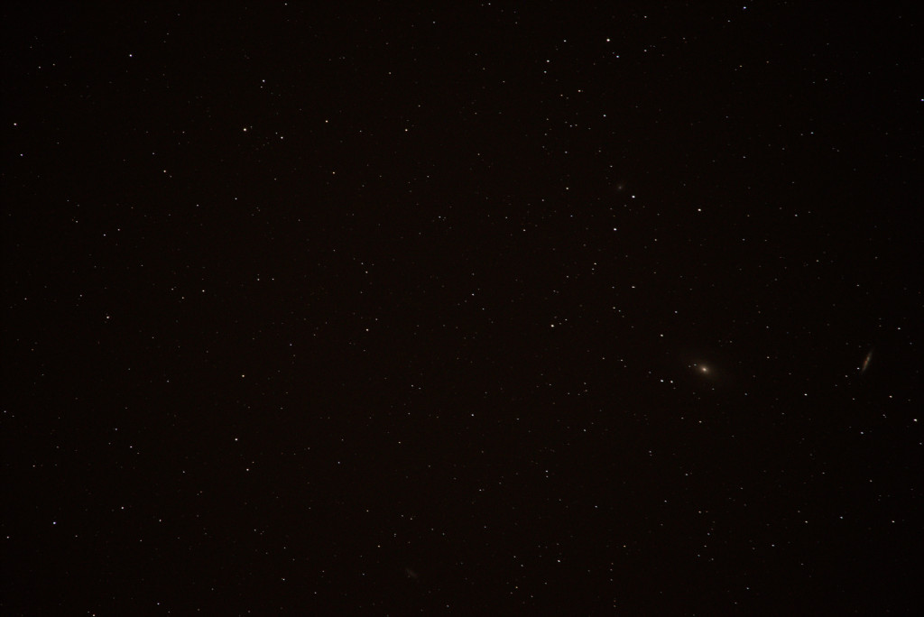 M8182-tf.jpg