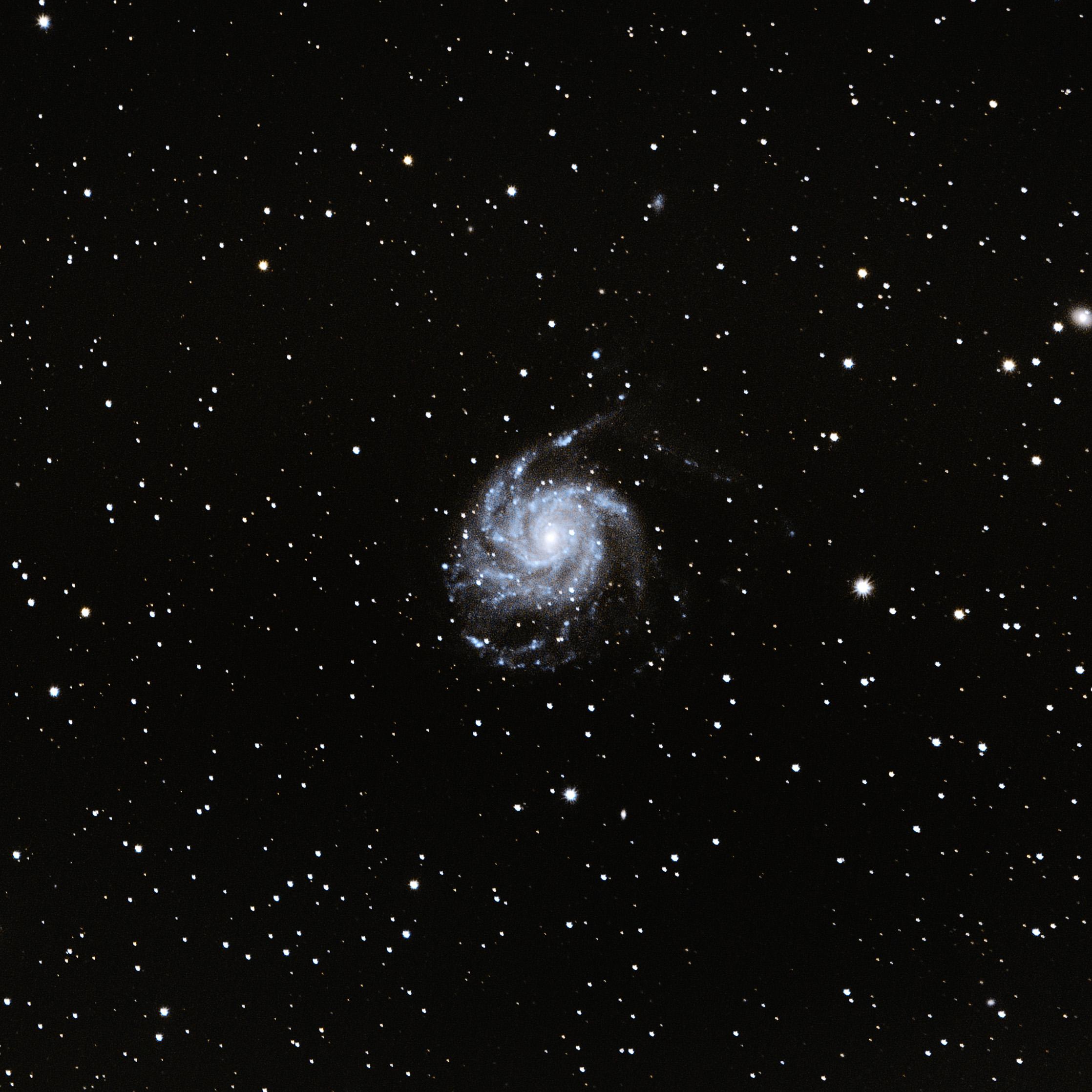 2020527-M101-Galaxie_moulinet.jpg
